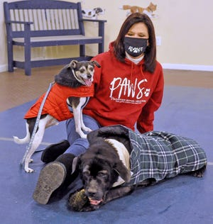Sheila Fike with Flash and King at the Wayne County Dog Shelter, where she has volunteered since it opened in 2015.