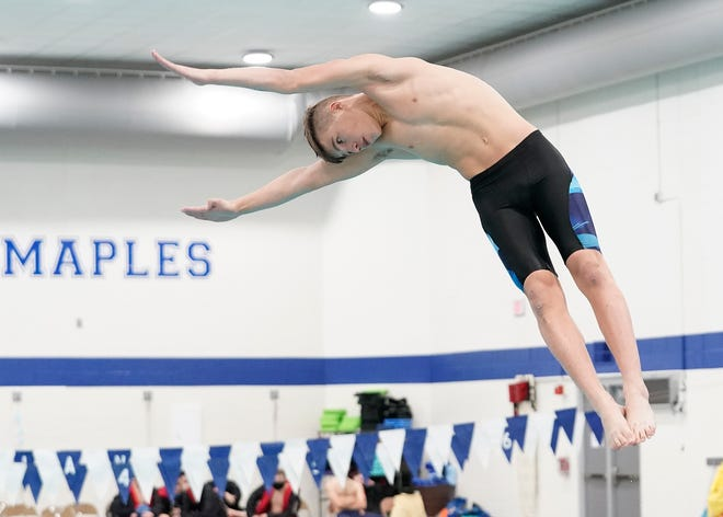 Adrian's Zach Kemerer dives during Thursday's dual meet against Pinckney.