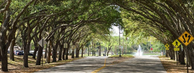 A look down City Center Parkway in Port Orange.
