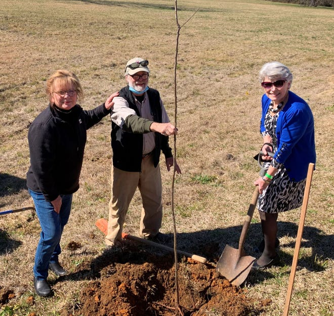 Participating in the recent planting of American chestnut trees, purchased thanks to a grant from the Alabama Power Foundation, on Gadsden State's Wallace Drive Campus were, from left, retired GSCC dean Dr. Teresa Rhea, former president of the local American Chestnut Foundation Jack Agricola and current Gadsden State president Dr. Kathy Murphy.