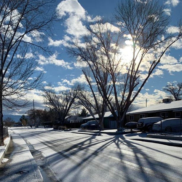 Snow covers a street in Los Lunas. It's too early to tell which plants were damaged by the cold this winter.