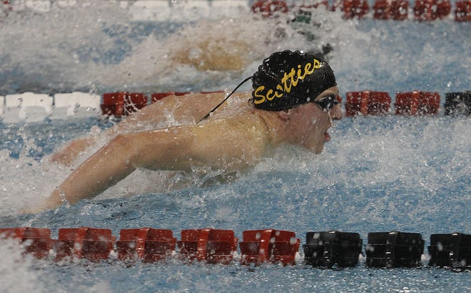 Tri-Valley's Hansel Holmes swims the 100 butterfly during the Division II boys state swim meet at CT Branin Natatorium in Canton on Thursday.