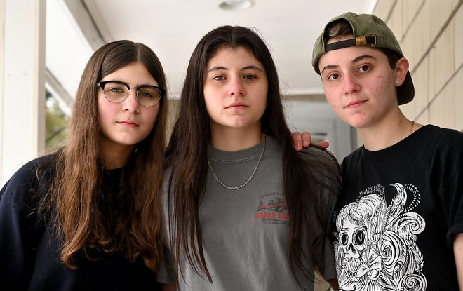 Marlborough sisters Edmee McCarthy, 15,  left, Fin McCarthy,  16,  and Giuls McCarthy, 19, form the band Circus Trees.