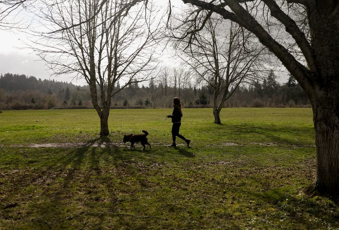 A parkgoer walks their dog in Minto-Brown Island Park, which reopened to the public Saturday, Feb. 27, 2021, following the ice storm in Salem, Oregon.
