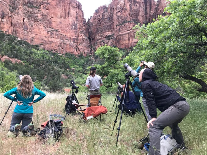 Photographers at Zion National Park. As Fall begins, the park transitions into its new operational schedule, with shorter hours for some activities, some facilities closed or limited, and continued rules in place for the COVID-19 pandemic.