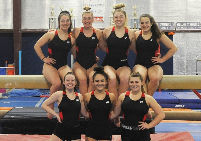 The Sheridan gymnastics team will make their fifth straight appearance in the state meet this weekend. Pictured are this year's team, top row (left to right): junior Keegan Hogan, senior Rylee Rodich, senior Addyson Boyer, junior Shannon Hogan; bottom row (l to r): junior Abbi Duke, freshman Kerris Shonk and sophomore Bianca Covert. Not pictured was sophomore Trinity Nobles.