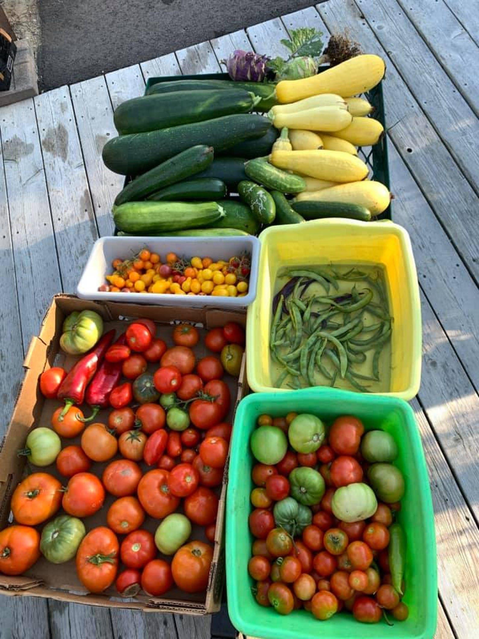 Tomatoes, peppers and zucchini are considered great starter crops for first-time gardeners because they're fairly easy to grow.