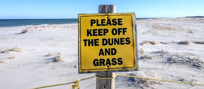 The dunes have gone missingat the south end of famous Nauset Beach, Orleans, making tidal wash-overs more common along the oversand trail toward Chatham.