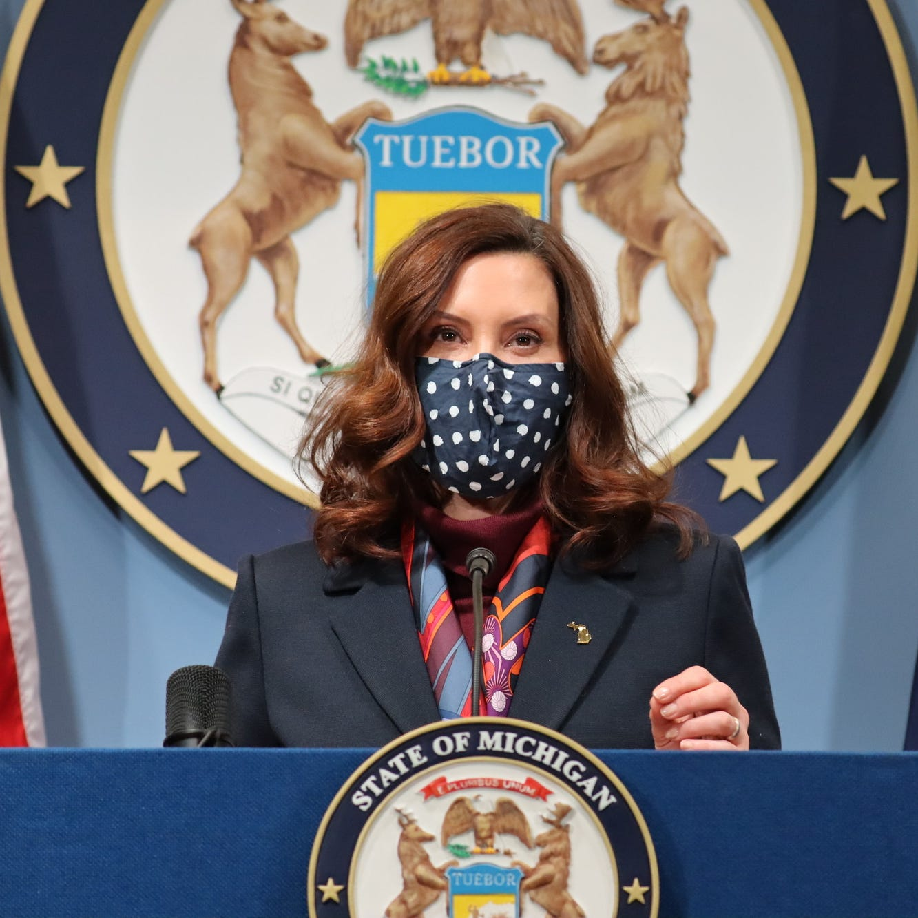 Governor Gretchen Whitmer announces new reengagements for restaurants, entertainment venues, and nursing homes and the creation of a task force under the Department of Labor and Economic Opportunity to make recommendations on reopening workplaces safely during a virtual press conference Tuesday, March 2, 2021.