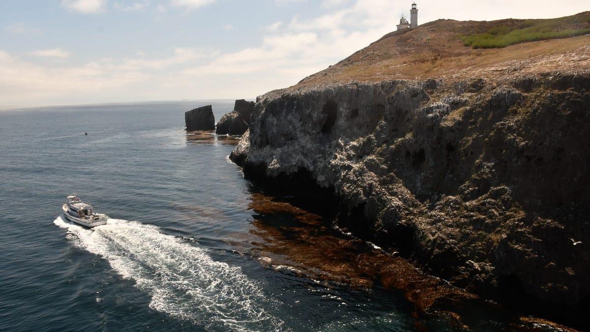 Dreaming of island life? Visit this national park virtually 2