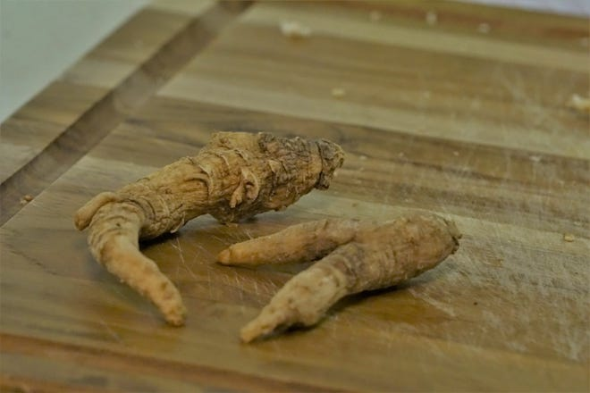 Almost all of the ginseng crop in the United States is produced in Wisconsin, much of it exported to Asia.