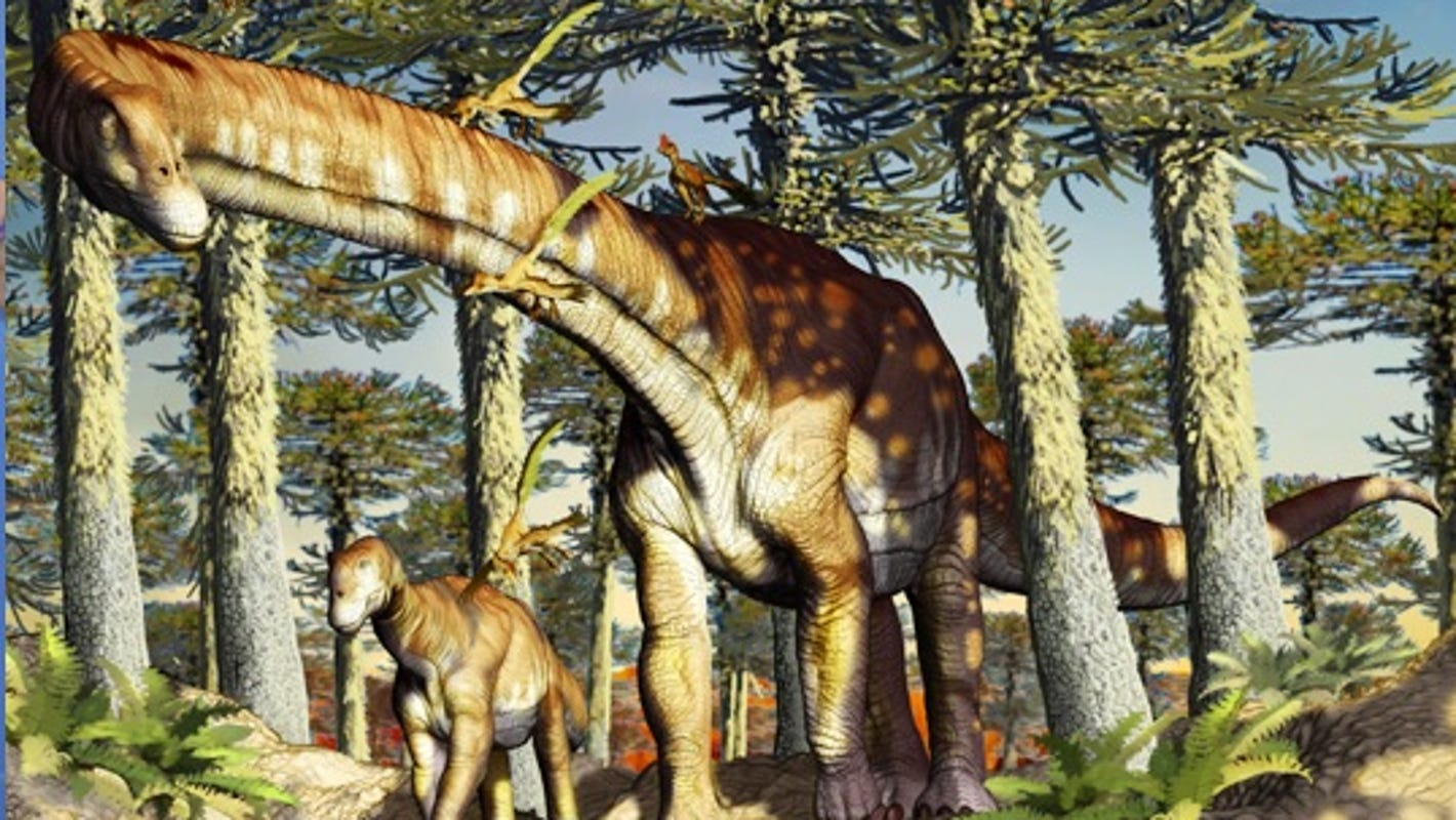 Fossils of oldest titanosaur discovered in Argentina - USA TODAY