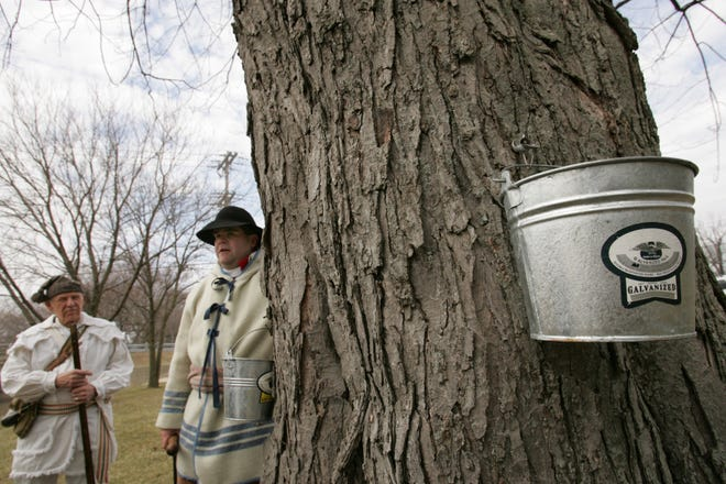 """Dick Micka (left), and Geoff Hoerauf (right), members of The Friends of the River Raisin Battlefield describe the steps for retrieving sap from maple trees on Saturday during the 2006 """"Sugar Bush"""" maple syrup event at River Raisin Territorial Park."""