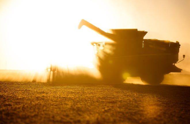 Martin Marr Jr. lines up another row of soybeans with a 40-foot draper head as dust from a dry summer surrounds the combine as he repeats the process from the path he just came from with the sun setting on farmland along Pleasant Plains Road, Thursday, Sept. 28, 2017, north of New Berlin, Ill.  [Justin L. Fowler/The State Journal-Register]