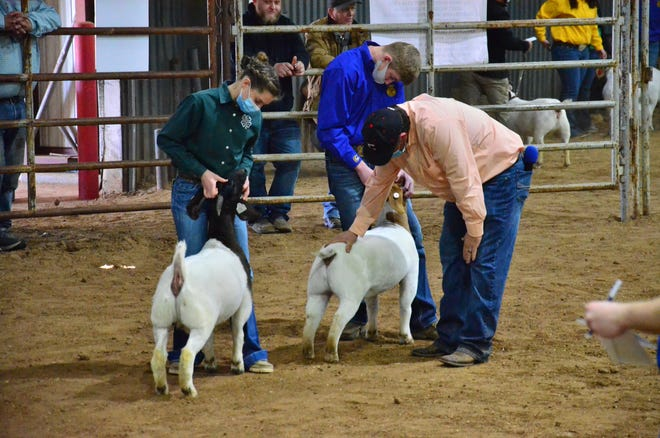 Students participate in the goat show at the Expo Center.