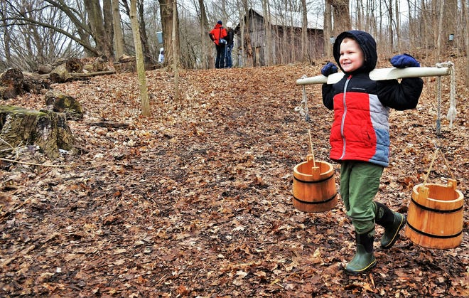 Maple Sugar Time will be held March 13 and 20 at Van Raalte Farm in Holland.