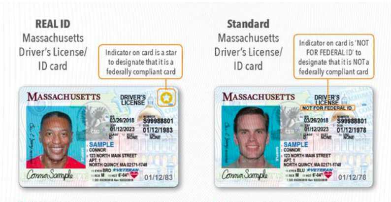 A comparison from the Massachusetts Registry of Motor Vehicles shows the difference between a REAL ID and standard driver's license.