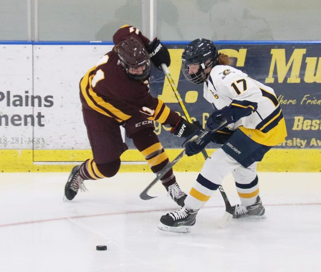 Nora Peterson led the Crookston girls' hockey team with nine goals this season.