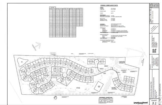 A site plan shows a 92-unit development of townhomes proposed for Banner Farm Road in Mills River.