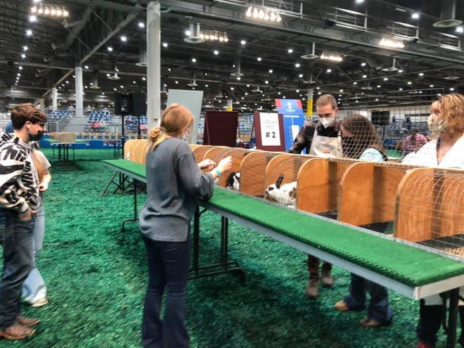Several Stephenville FFA members recently competed at the HLSR competition.