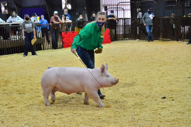 Heartly Snyder, Pott. Co. Animal Science 4-H