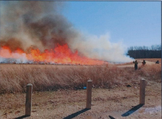 Plumb Lake County Park was control-burned Wednesday as part of a habitat regrowth effort.