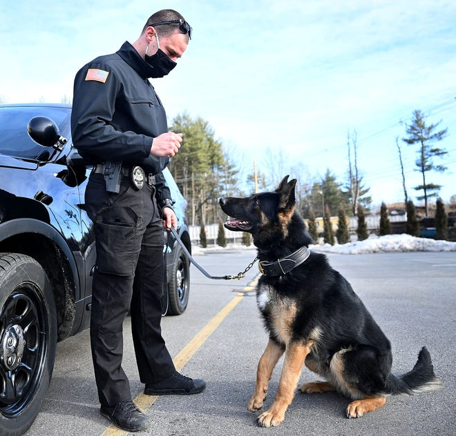 """""""Jocko,"""" the Hudson Police Department's new police dog, and handler Officer Sam Leandres, shortly after arriving from a trainer in Concord, New Hampshire, Saturday, March 6."""