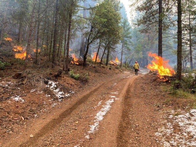 Brush piles burn as part of the Potato 2 Project prescribed burn in the Shasta-Trinity National Forest.