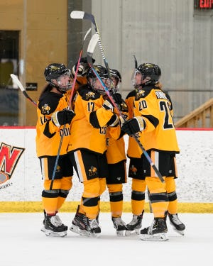Adrian College women's hockey celebrates a goal during Saturday's game against Aurora