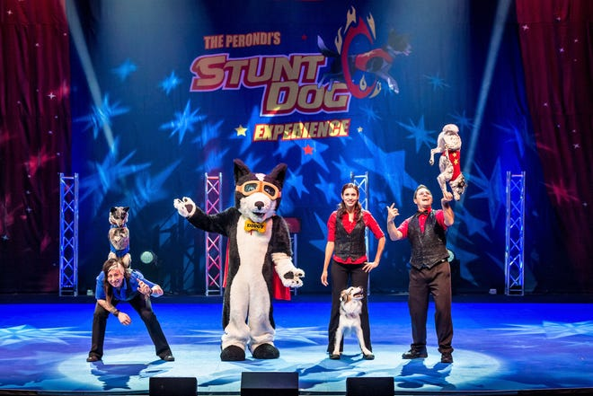 Rescue dogs, and a mascot, display their skills in a stunt show with hosts Chris and Suhey Perondi.