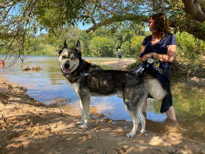 Erin Walter found a surprise in this pandemic, a love of a dog named Spur.
