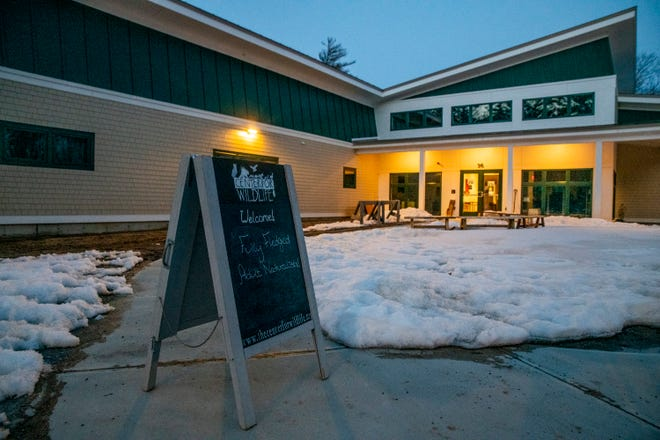 The Center for Wildlife hosts an educational program Fully Fledged: An Adult Naturalist Series at their new facility in Cape Neddick, Maine, on March 4, 2021.