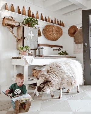 """Copeland Beau membaca """"Kami Milik Satu Sama Lain"""" bagi Rahmat, domba yang menjadi dasar buku ini."""