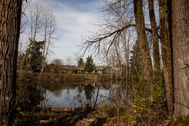 The wooded area containing the two Bethel ponds are at the center of uncertainty as developers look to build in the surrounding land. While there isn't intention to fill the ponds, neighbors worry about access.
