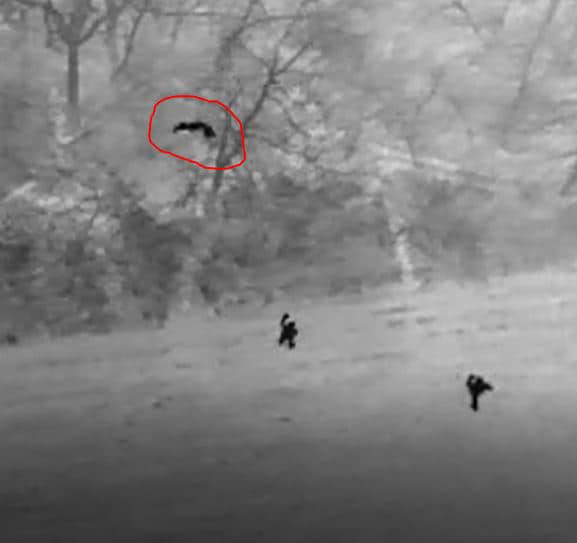 A man who fled a domestic violence incident was found with the aid of thermal imaging on a drone operated by Tuscarawas County Sheriff's Office evidence technician Sgt. Ryan Hamilton. The suspect is circled.
