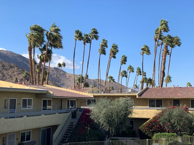 Palm trees sway in gusty winds near a Palm Springs condo complex Tuesday, March 9, 2021. Gusty winds were expected to weaken as a winter storm drops snow and low temperatures on Southern California this week.