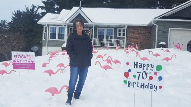 Despite all the recent snow and ice, the Hospice of Guernsey Flamingos decided to come out of hibernation to surprise Carol recently forher 70th birthday. Typically, these amusing events occur only once the ground thaws, but just like Mother Nature, the flamingos are unpredictable. For more information on flocking or to order one call740-432-7440. The cost is by donation and all funds raised to directly to local patient care and bereavement services.