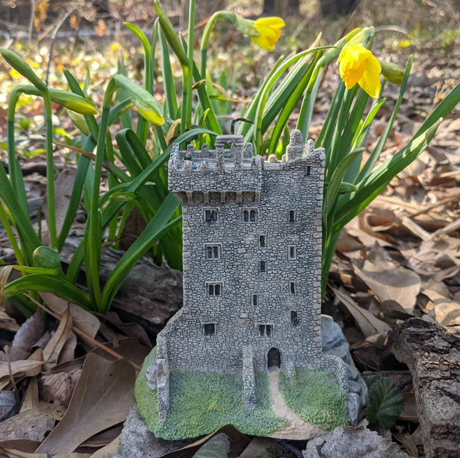 Blarney Castle with the first daffodils