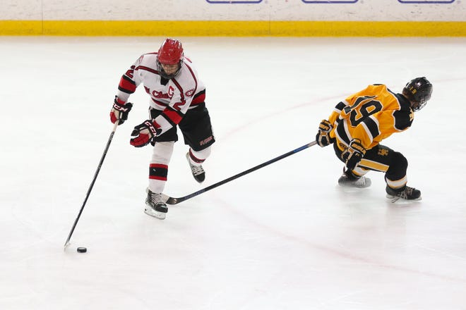 St. Charles' Diego Pitones glides past Upper Arlington's Whitty Tevonian in the district final March 6. The senior forward recorded 16 goals and 12 assists to be named second-team all-league as the Cardinals finished 20-7-1 overall.