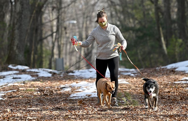 Jennifer Moore, of Hopedale, walks her dogs, Buster and Dobby, down an unpaved road in the Parklands, Hopedale's conservation land, near her home on Overdale Parkway, March 11, 2021. Developers are looking to build a series of luxury homes between her neighborhood and the Parklands.