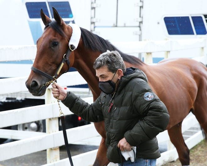 Undefeated colt Concert Tour, trained by Bob Baffert, is one of the top contenders for Saturday's Rebel Stakes at Oaklawn Park.