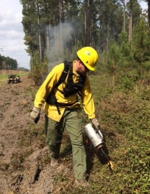 Firefighters start prescribed burns to manage forest growth and prevent wildfires.