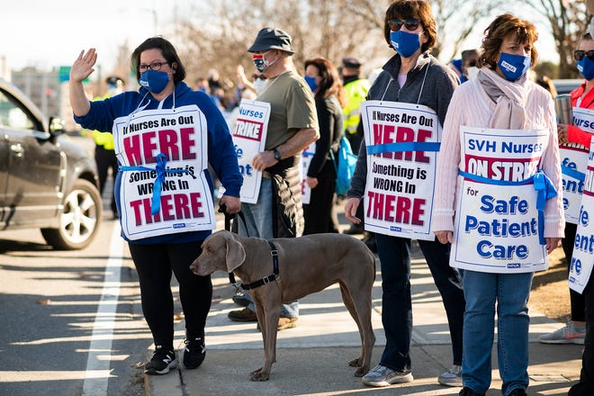 Christina Nester and her Weimaraner Daisy join the St. Vincent's nurses Friday on the picket line Friday.