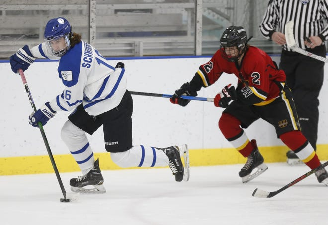 SeniorforwardJamesSchwinneIII led Hilliard in scoring with30 goals and 30 assists.The Wildcats reached a semifinal of the Buckeye Cup state tournament.