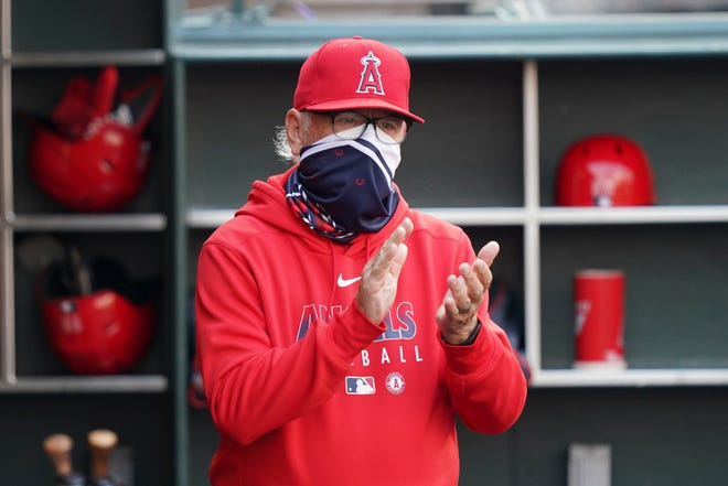 Joe Maddon is in his second season as manager of the Angels.