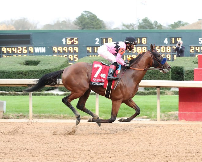 Concert Tour and jockey Joel Rosario win the Grade 2 Rebel Stakes on March 13 at Oaklawn Park.
