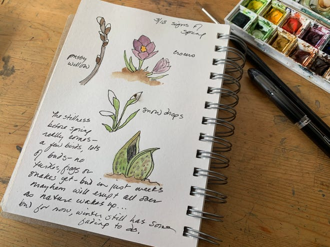 Signs of spring: watercolor sketches from the author's journal. Winter still has some fading to do.