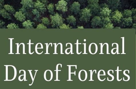 International Day of Forests is March 21