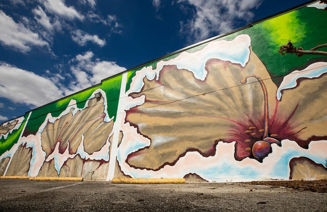 """""""Crape Blossoms,"""" a mural by Lakeland artist Kate Hall at Low Country Vintage, 913 S. Florida Ave., is the first public work to be completed as part of the Lakeland Community Redevelopment Agency's Art Infusion program."""