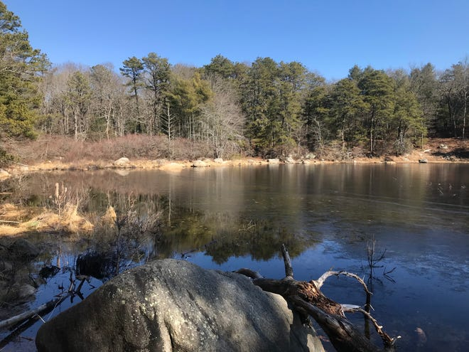 Isolated Bull Head Pond is a spot for quiet contemplation in the western part of Susannah's Woods, in South Kingstown. The preserve is named in memory of Susannah Klebovitz, a young girl who died in a fire.